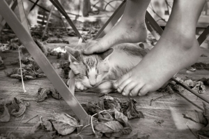 Breaks and breaths, Alain Laboile_10